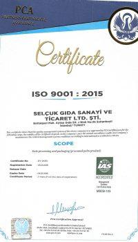 iso-9001ing