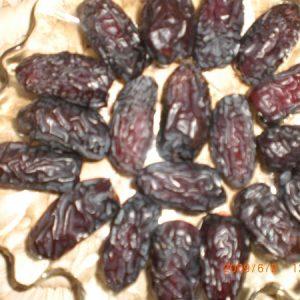 medine-safawi-2